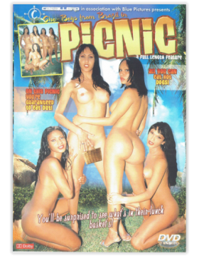 DVD-SHE-BOYS FROM BRAZIL IN PICNIC